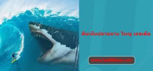 ฝันเห็นปลาฉลาม ใหญ่ เลขเด็ด